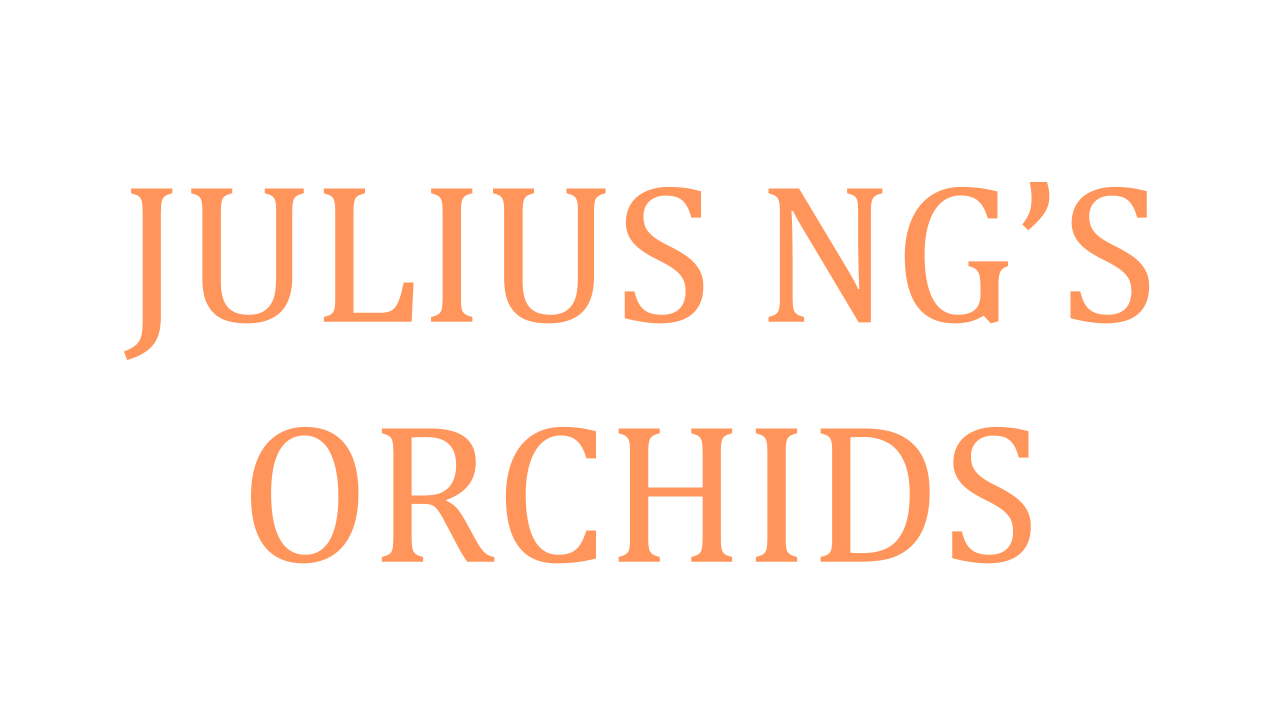 julius-ngs-orchids